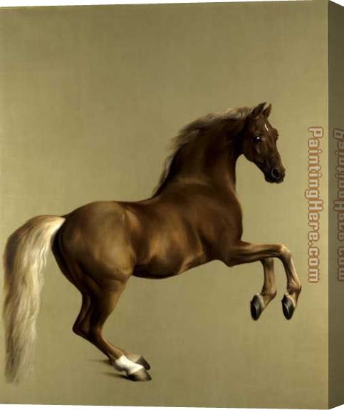 George Stubbs Whistlejacket Stretched Canvas Painting