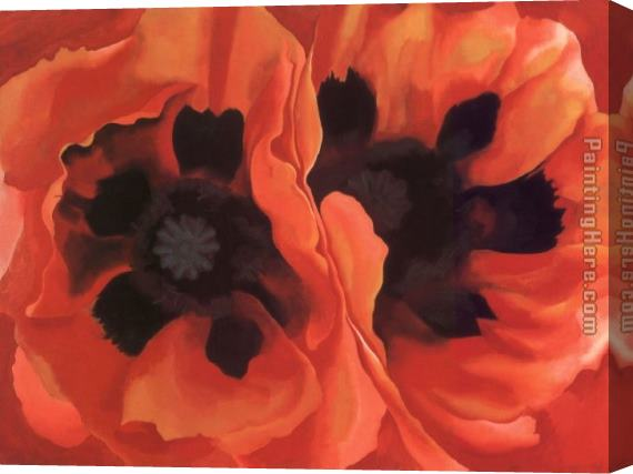 Georgia O'Keeffe Oriental Poppies 1928 Stretched Canvas Painting