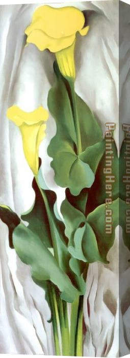 Georgia O'Keeffe Yellow Calla-Green Leaves Stretched Canvas Painting