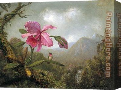 Martin Johnson Heade Orchid and Hummingbird near Mountain Waterfall Stretched Canvas Painting