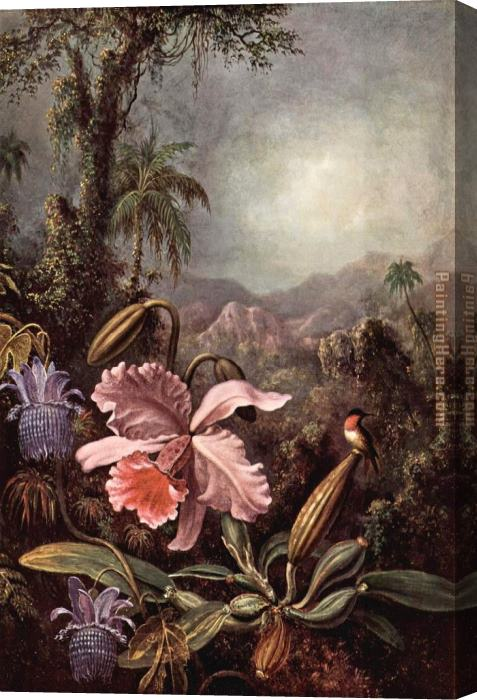 Martin Johnson Heade Orchids passion flower and hummingbirds Stretched Canvas Painting