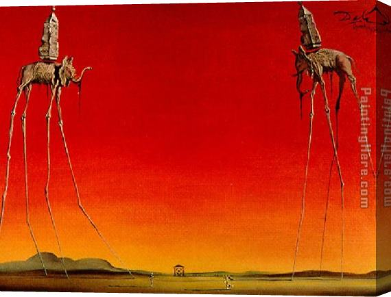 Salvador Dali Les Elephants Stretched Canvas Painting