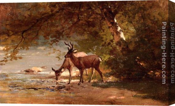 Thomas Hill Deer in a Landscape Stretched Canvas Painting