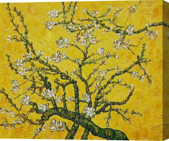 Vincent van Gogh Branches of an Almond Tree in Blossom yellow Stretched Canvas Painting