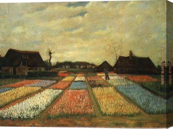 Vincent van Gogh Flower Beds in Holland Stretched Canvas Painting