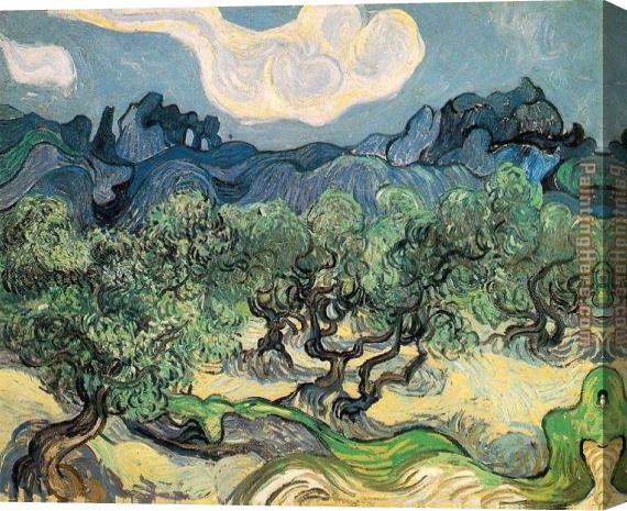 Vincent van Gogh The Olive Trees Stretched Canvas Painting