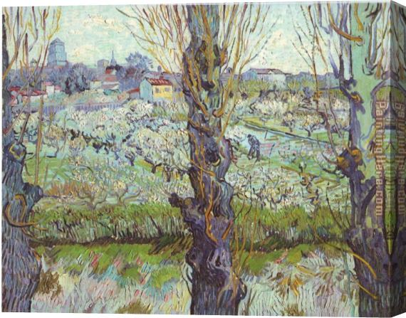Vincent van Gogh View of Arles Flowering Orchards Stretched Canvas Painting