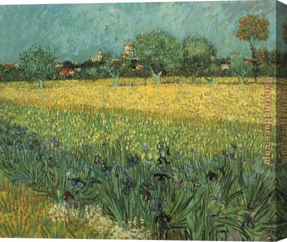 Vincent van Gogh View of Arles with Irises Stretched Canvas Painting