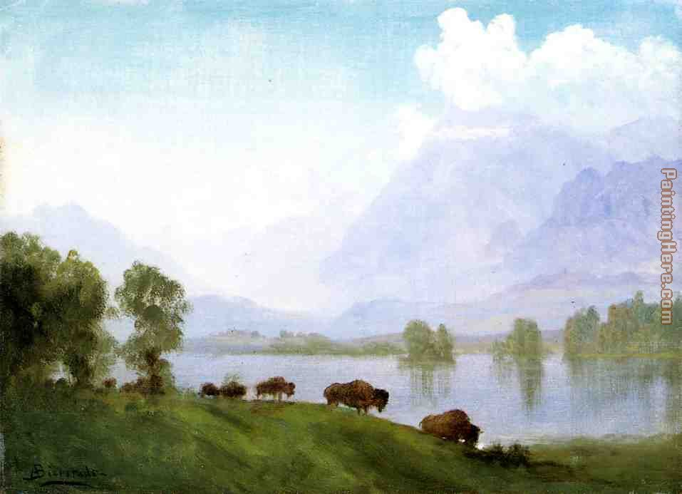 Albert Bierstadt Buffalo Country Art Painting