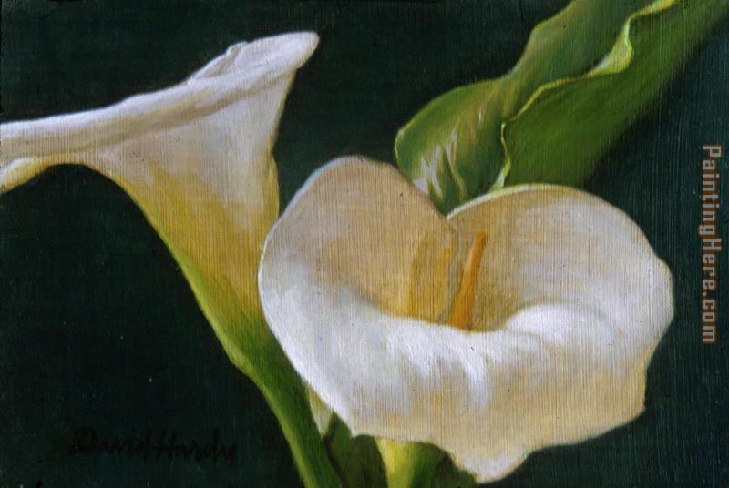 Calla Lily Duo painting - David Hardy Calla Lily Duo art painting
