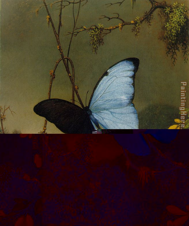 Martin Johnson Heade Blue Morpho Butterfly Art Painting