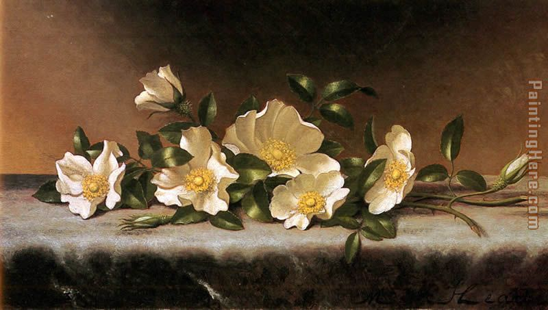 Cherokee Roses On A Light Gray Cloth painting - Martin Johnson Heade Cherokee Roses On A Light Gray Cloth art painting