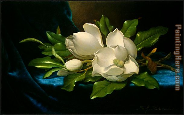 Martin Johnson Heade Giant Magnolias on a Blue Velvet Cloth Art Painting